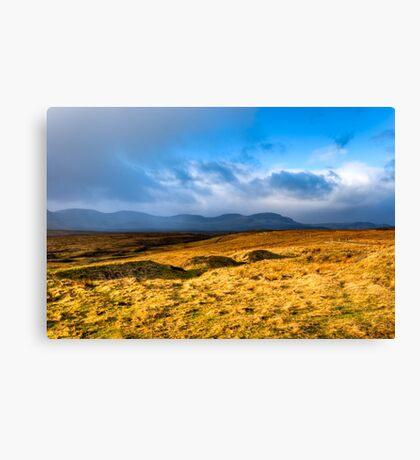 Grass Sea - Landscape on the Scottish Isle of Skye Canvas Print