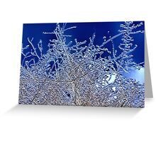 Crystalline Branches Greeting Card