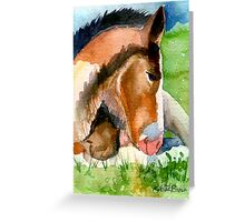Clydesdale Foal Horse Portrait Greeting Card