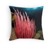 Pink Whip Throw Pillow