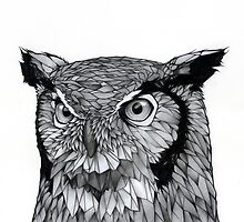 Owl by Puddingshades