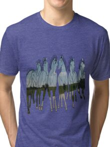 TEXAS FREEDOM Tri-blend T-Shirt