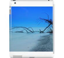 Stump Pass Beach iPad Case/Skin