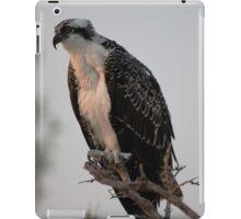 Posing iPad Case/Skin
