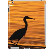 morning glow iPad Case/Skin