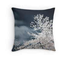 The paradox Throw Pillow
