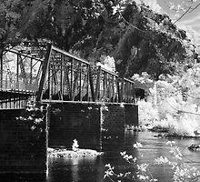 Bridge over the Potomac by Bowman1