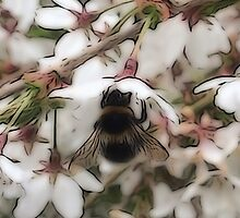 Busy Bee by DeneWest