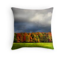"""Clouds of Fall""  #4 Throw Pillow"