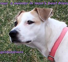 banner for mans best friend by gabbielizzie