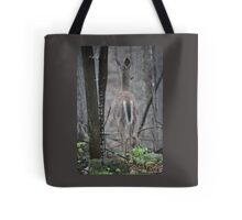 Deer Looks in Ravine Tote Bag