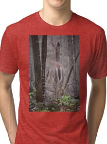Deer Looks in Ravine Tri-blend T-Shirt