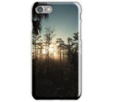 foggy swamp iPhone Case/Skin
