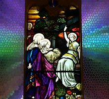 Window of St Peter's Anglican Church, Murrumbeena by Bev Pascoe