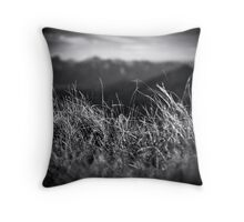 Rollei in the Grass Throw Pillow