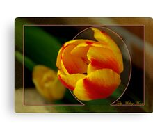 Tulip Mickey Mouse Canvas Print