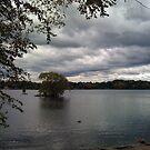 Autumn Pond 2 by gailrush