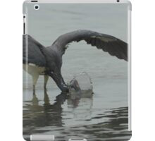 Splashdown iPad Case/Skin