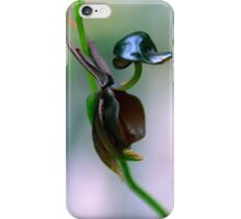 Flying Duck Orchid - Caleana major iPhone Case/Skin
