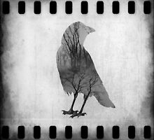 The Soul Of Crow by gothicolors