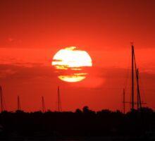 beautiful sunrise over the harbor Sticker