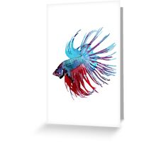 Betta Pillow - Blue and Red Greeting Card