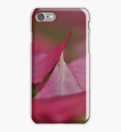 When autumn leaves start to fall.... iPhone Case/Skin
