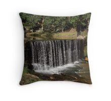 Sells Mill Park Pond Throw Pillow