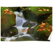 MOSSY BOULDERS AND CASCADE Poster