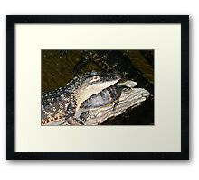 Real Friendship Framed Print