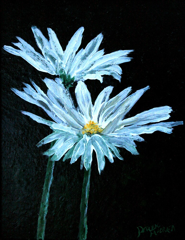 oil painting of daisy flowers by derekmccrea