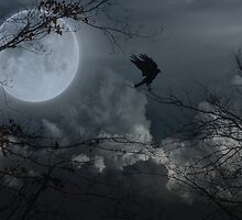Crow's Night Moves by gothicolors