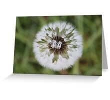 Peaceful Symmetry Greeting Card