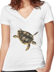 Sea turtles Women's Fitted V-Neck T-Shirt