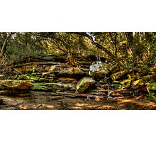 Somersby Falls Panorama Photographic Print