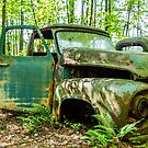 Old Green Truck by dbvirago