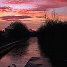 Frozen sunrise by citrineblue