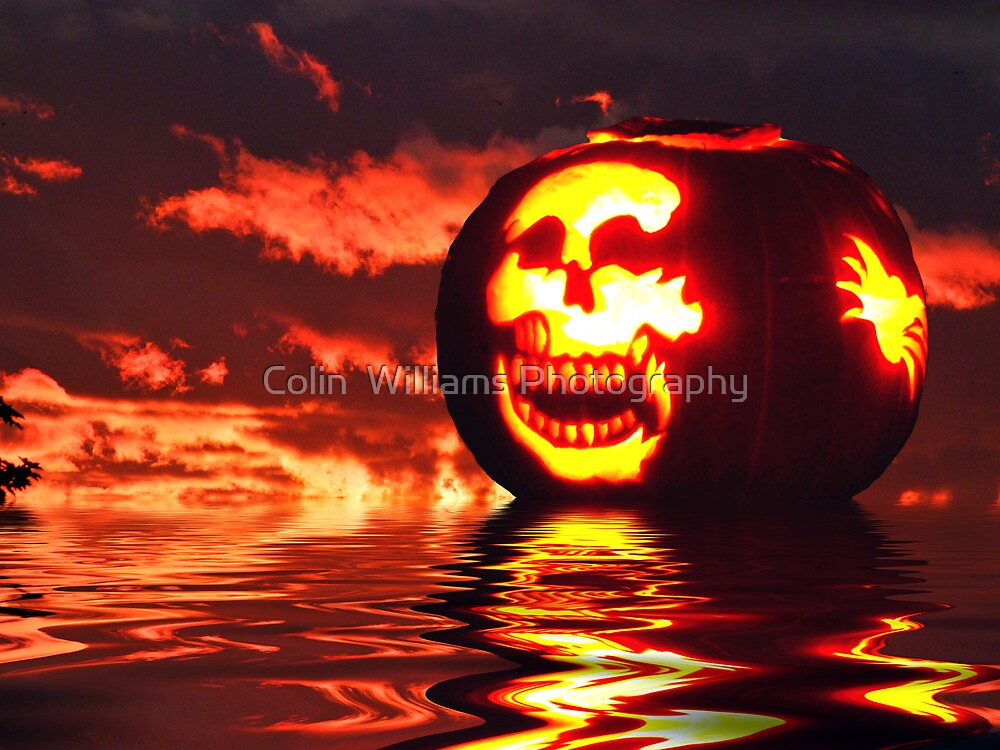 Pumpkin by Colin  Williams Photography