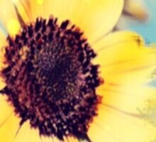 western country impressionism art watercolor sunflower Sticker
