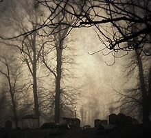 foggy churchyard by Cate Davies