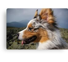 Piper in the Wind Canvas Print