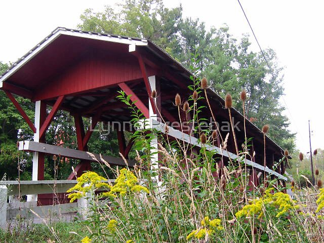 a covered bridge in PA by Lynne Prestebak