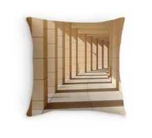 urban softness: or:. when you have seen lines you wanna see more lines.  Throw Pillow