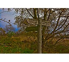 On The Cleveland Way Walk. Photographic Print