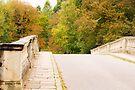 A Bridge to Fall by CJTill