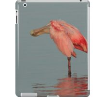 morning bath iPad Case/Skin