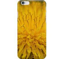 Macro Dandelion Flower iPhone Case/Skin