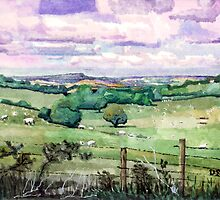 Bredon hill and Vale of Evesham from the Cotswold escarpment by doatley