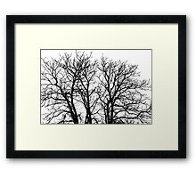 Autumn Sadness Fine Art Print Framed Print