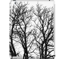 Autumn Sadness Fine Art Print iPad Case/Skin